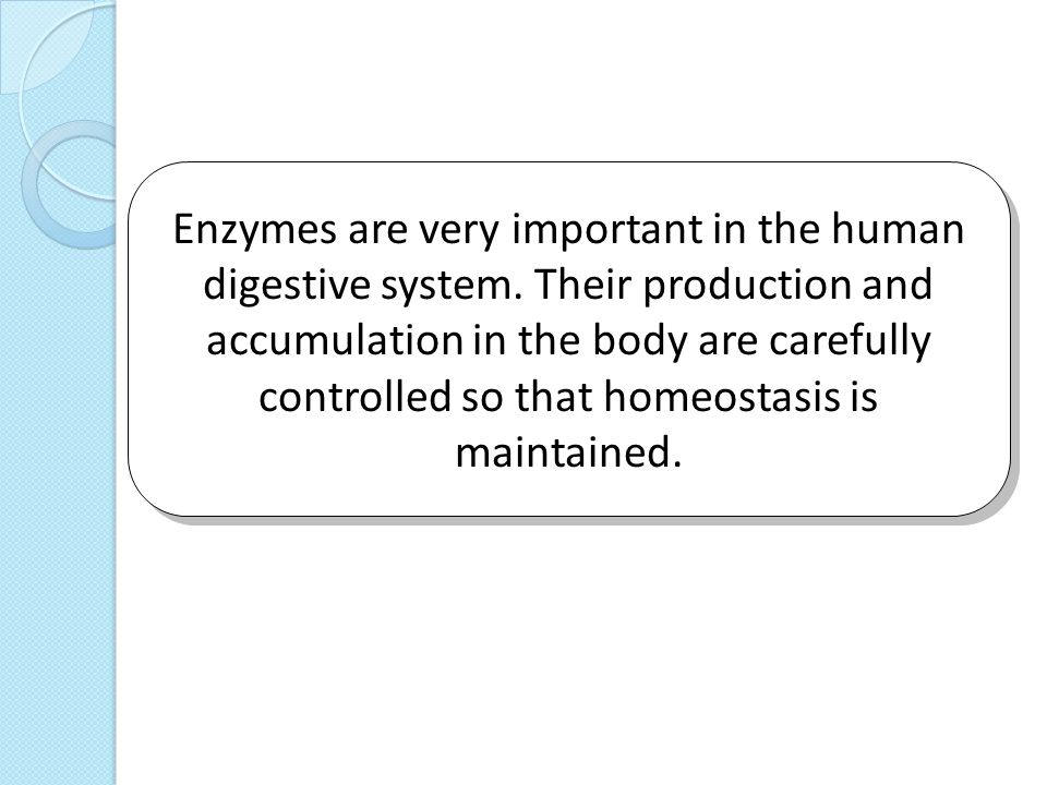 importance and benefits of enzymes in the human body This article will educate you about the benefits of digestive enzymes, which are an integral part of the digestion system follow us:  they all play an important role in the breakdown of.