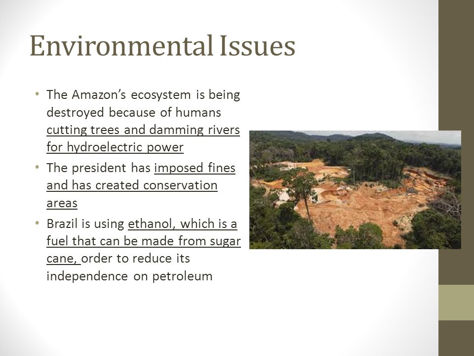 the environmental problems of brazil More information about brazil is available on the brazil page and from other department of state publications and other sources listed at the end of this fact sheet.