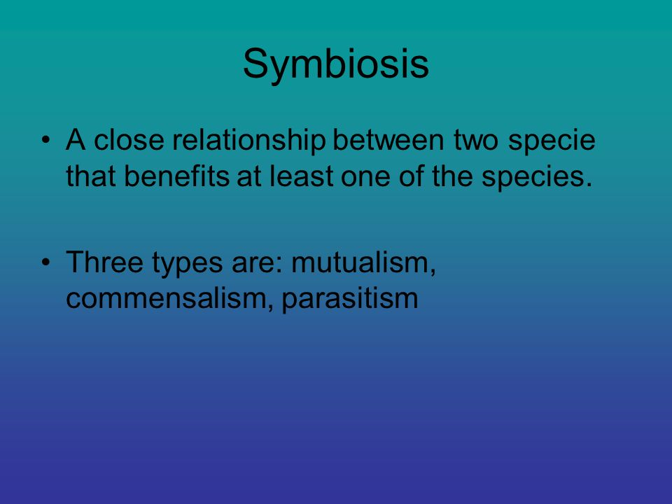 any close relationship between species