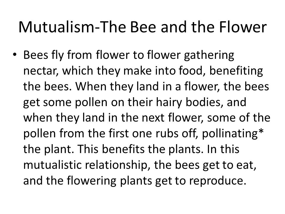 is the relationship between a plant and its pollinator mutualistic
