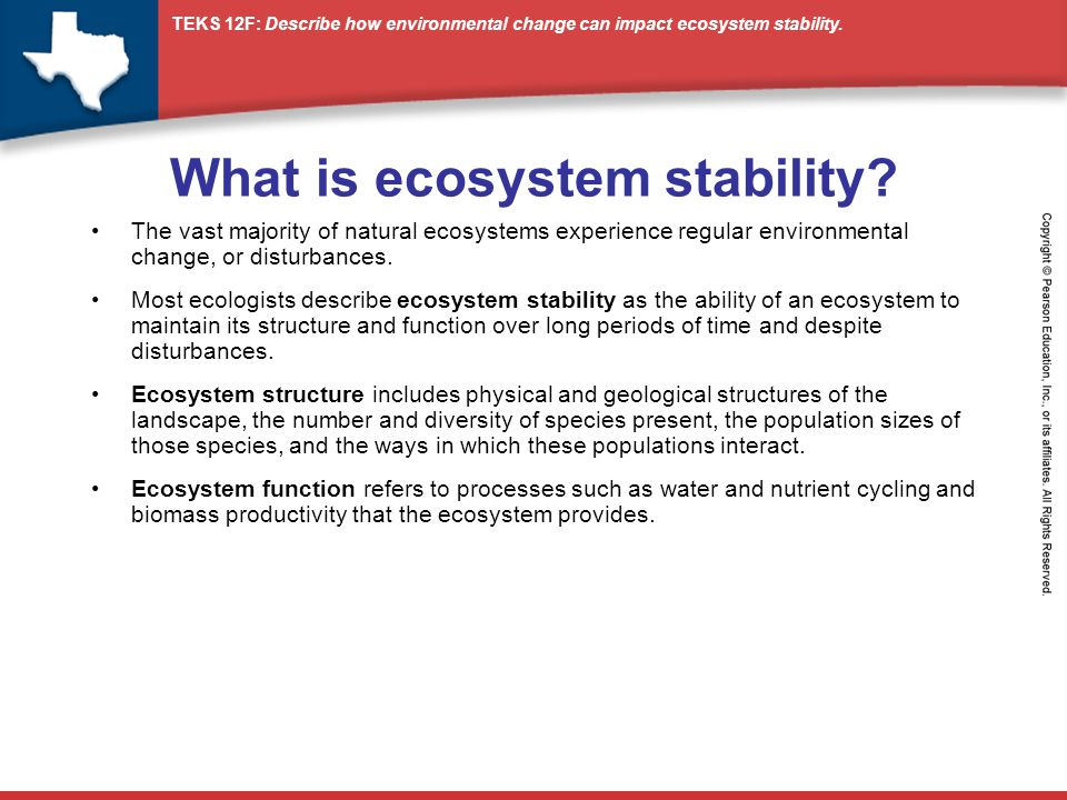 ecosystem function structure and change essay Ecosystems undergo changes in their structure and function as time passes some of these changes are minor and only affect a small area, others are the cause of major changes in the species present and affect the ecosystem as a whole.