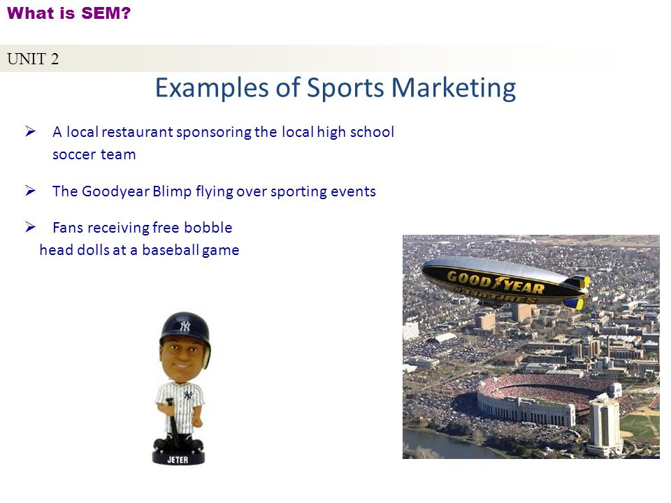 unit 2 � what is sem copyright 169 2010 by sports career