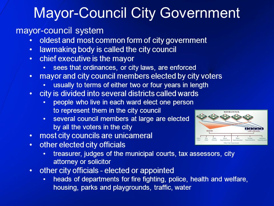 State and Local Government Local Government ~~~~~ City Government ...