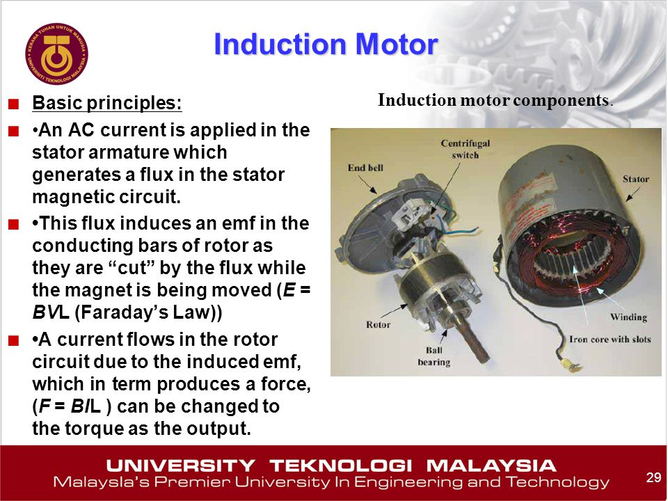 Induction motor components.