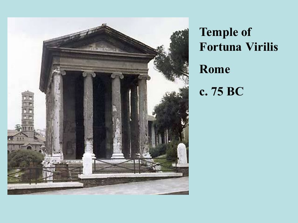 temple of fortuna virilis essay Roman architectural advancements 5 may we will write a custom essay sample on an example of this is the temple of fortuna virilis.