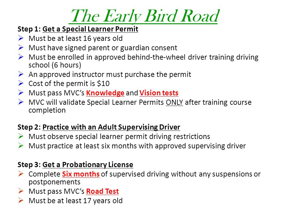The Early Bird Road Step 1: Get a Special Learner Permit