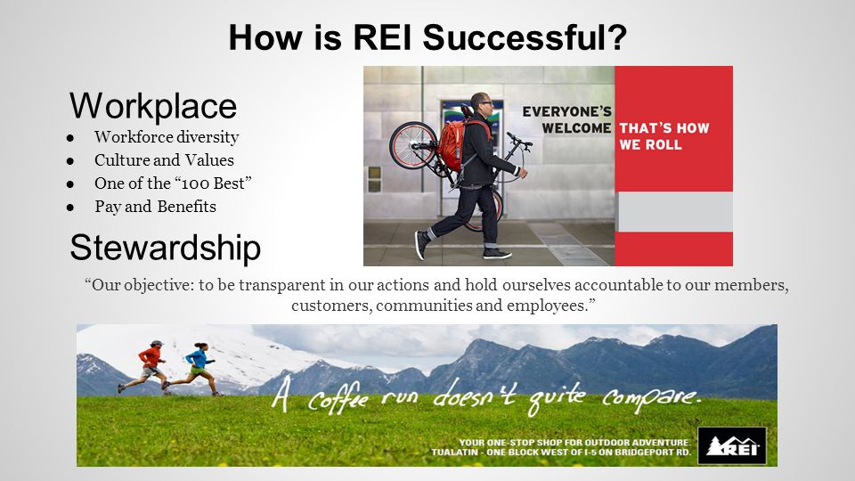 How is REI Successful Workplace Stewardship Workforce diversity