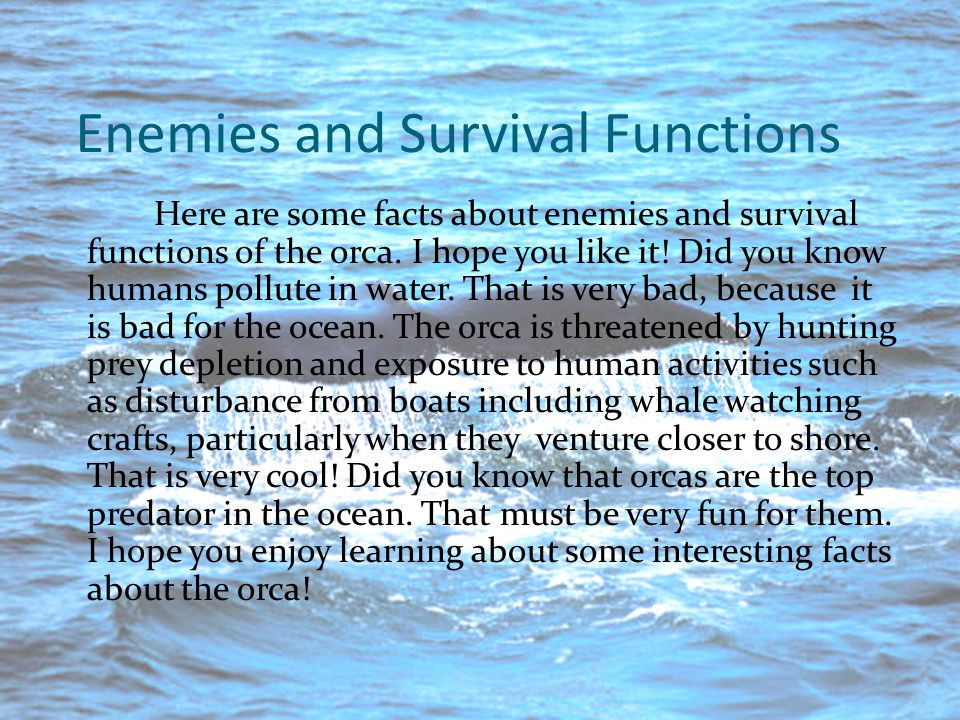 Enemies and Survival Functions