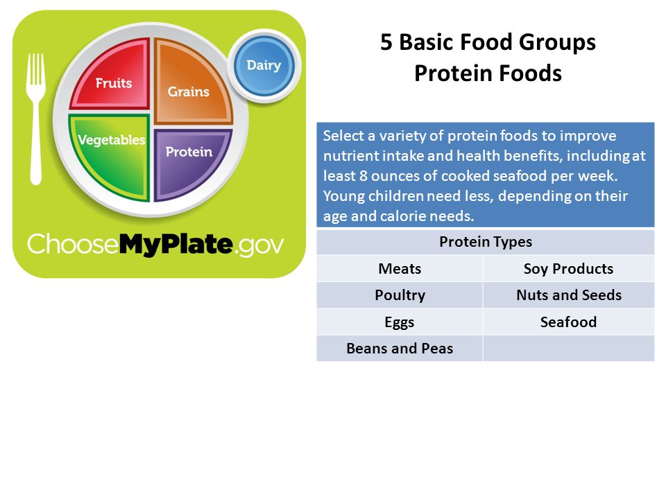 5 Basic Food Groups Protein Foods