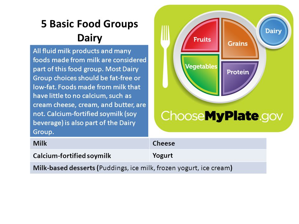 5 Basic Food Groups Dairy