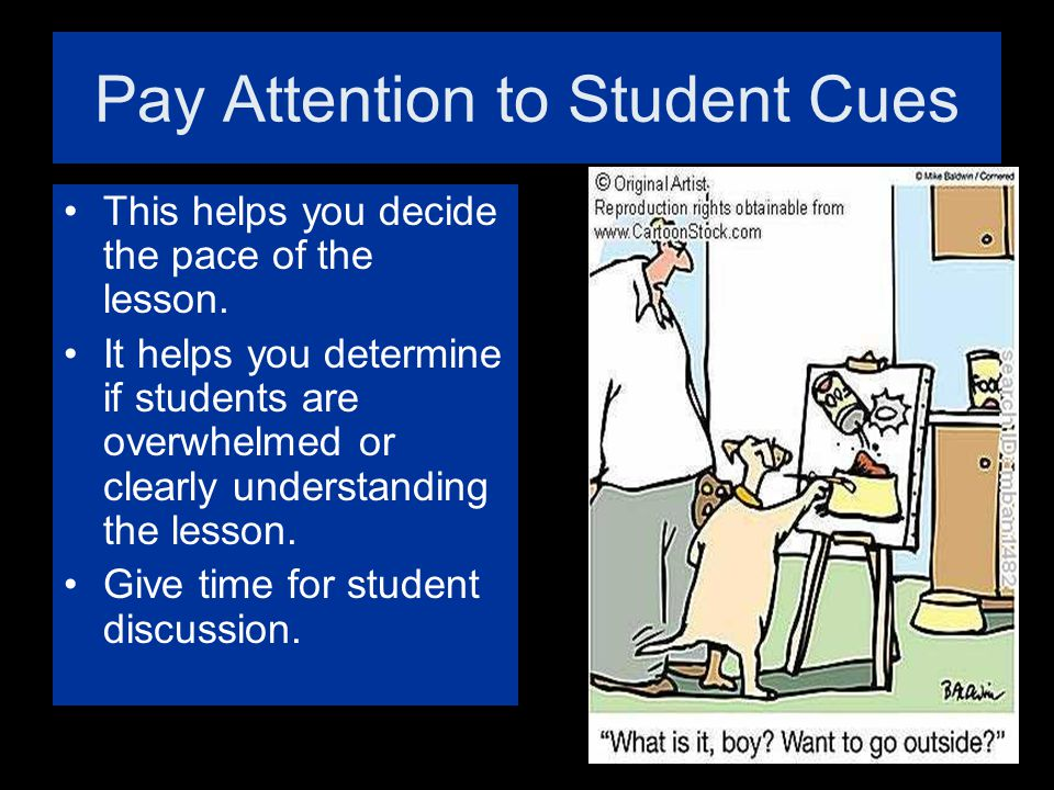 Pay Attention to Student Cues