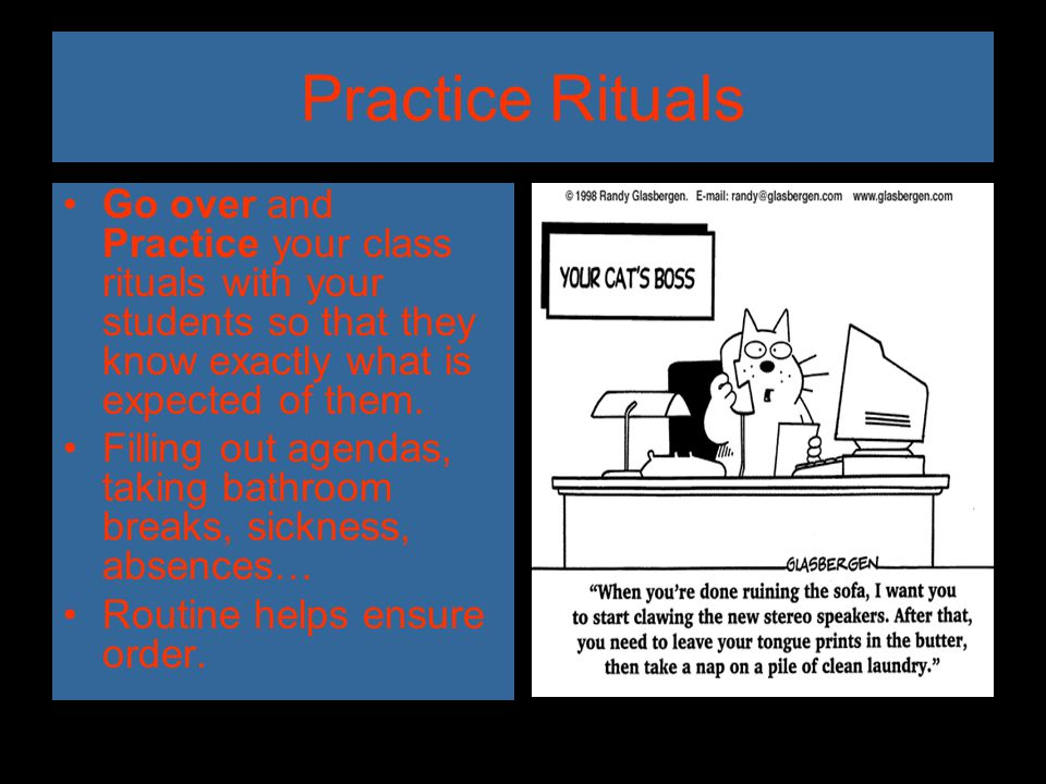 Practice Rituals Go over and Practice your class rituals with your students so that they know exactly what is expected of them.