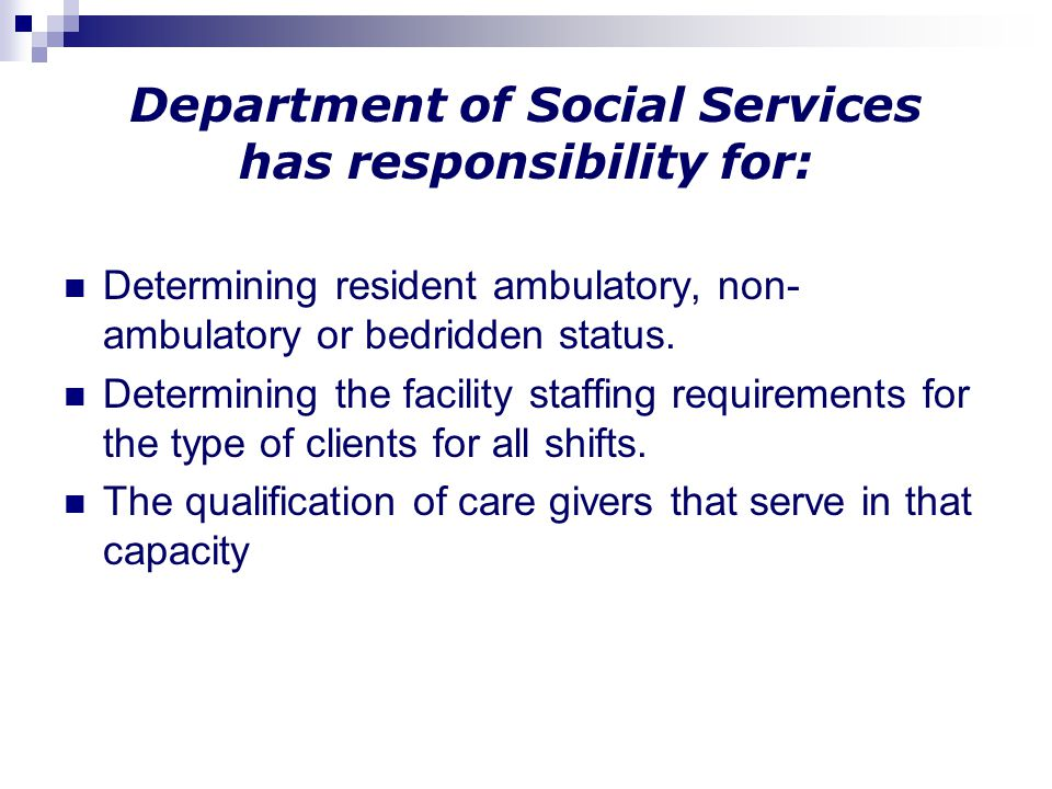 Department of Social Services has responsibility for:
