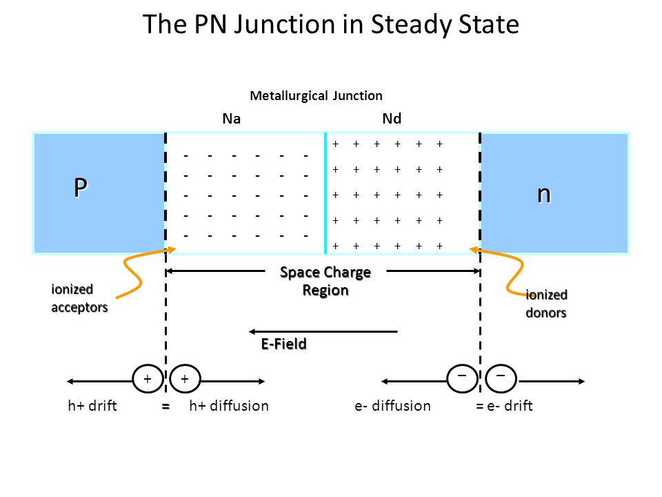 The PN Junction in Steady State