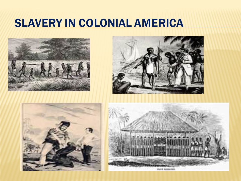 colonial latin american slavery Kids learn about the history of slavery during colonial america including indentured servants, the first slaves, how they lived, how slaves were treated, and the jobs they did.