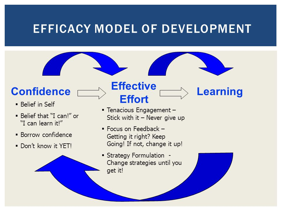 Efficacy Model of Development
