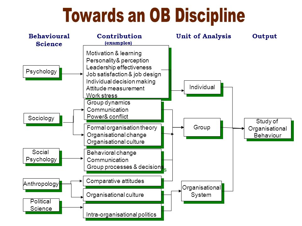 organization behavior disciplines ob disciplines Organizational behavior is the field of study that draws on theory, methods, and principles from various disciplines to learn about individual perceptions, values, learning capacities, and actions .