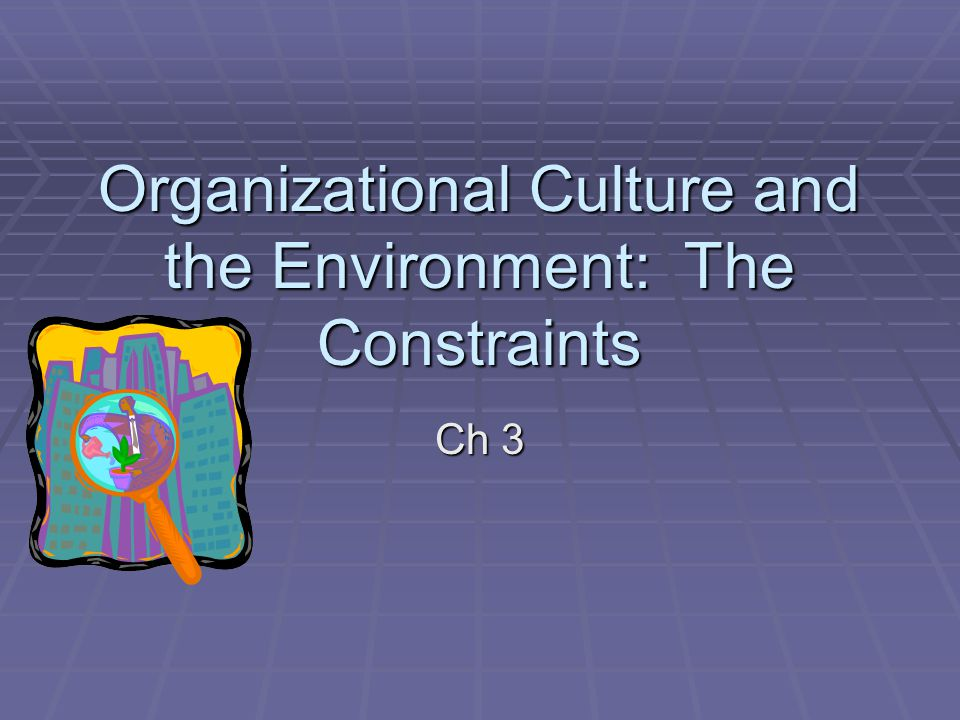 Organizational Culture and the Environment: The Constraints