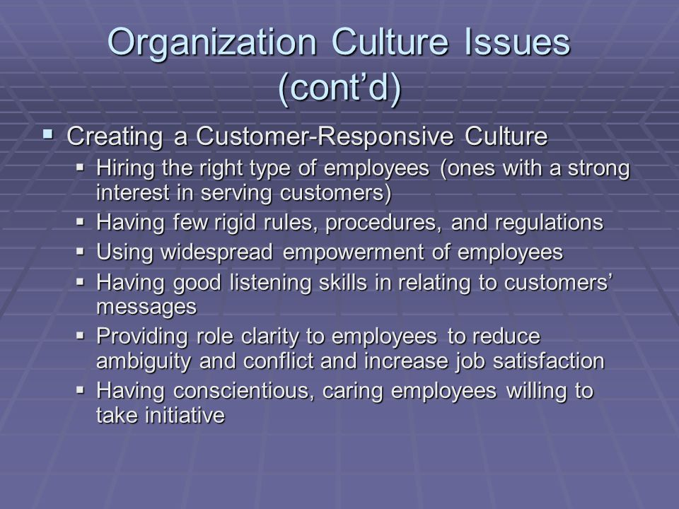 Organization Culture Issues (cont'd)
