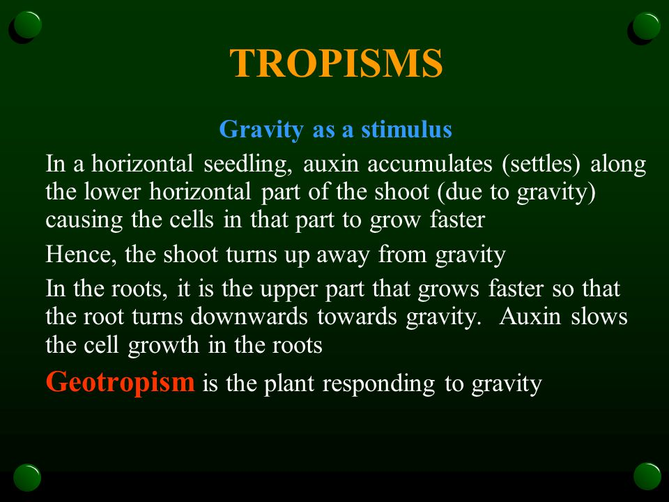 TROPISMS Gravity as a stimulus