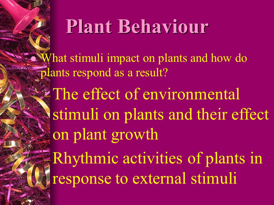 Plant Behaviour What stimuli impact on plants and how do plants respond as a result