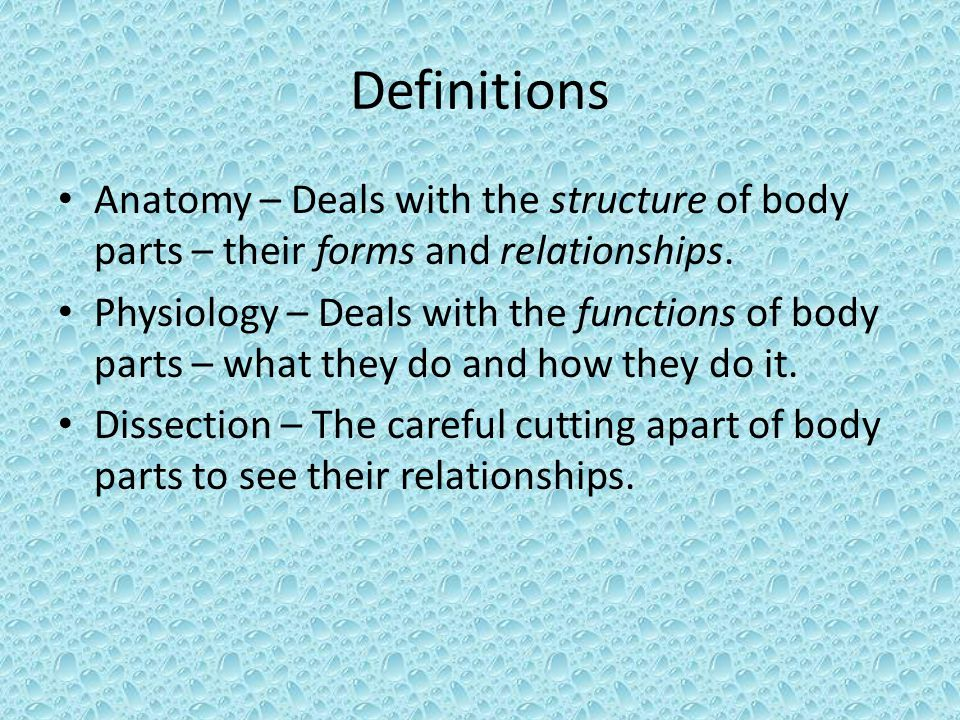 Definitions Anatomy – Deals with the structure of body parts – their forms and relationships.