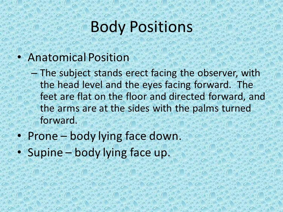 Body Positions Anatomical Position Prone – body lying face down.