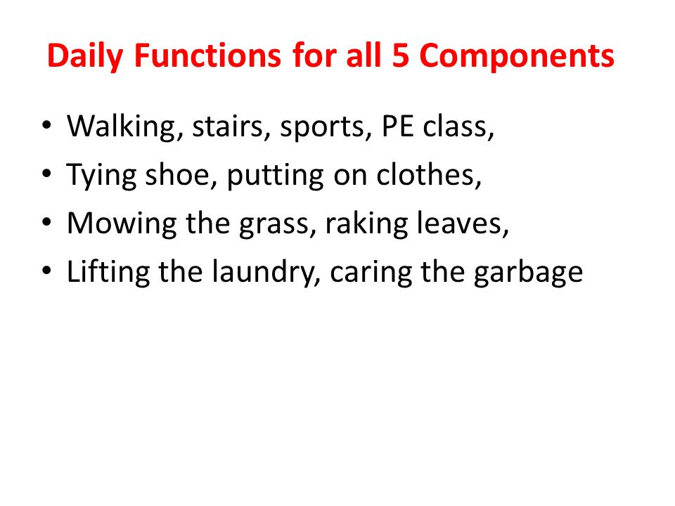 Daily Functions for all 5 Components