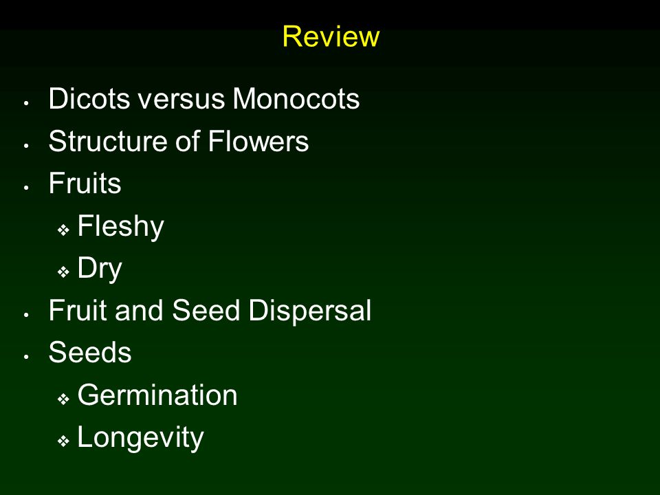 Review Dicots versus Monocots. Structure of Flowers. Fruits. Fleshy. Dry. Fruit and Seed Dispersal.