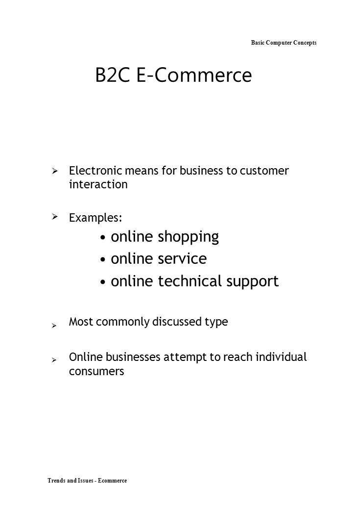 B2C E-Commerce Basic Computer Concepts