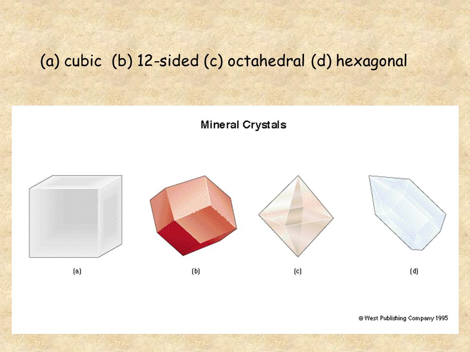 (a) cubic (b) 12-sided (c) octahedral (d) hexagonal