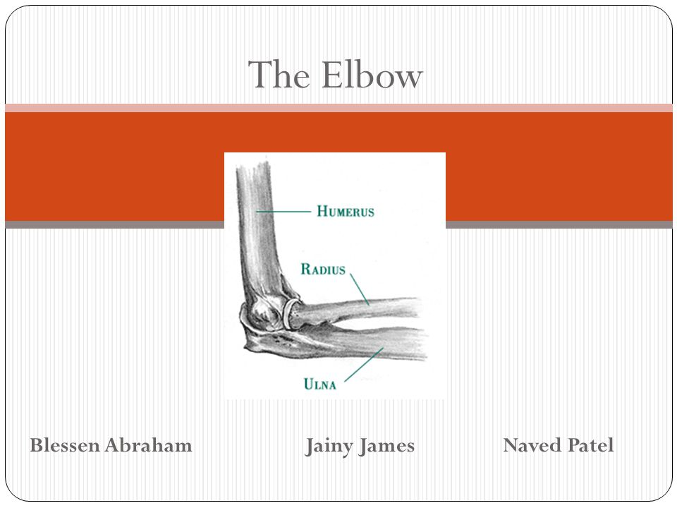 The Elbow Blessen Abraham Jainy James Naved Patel