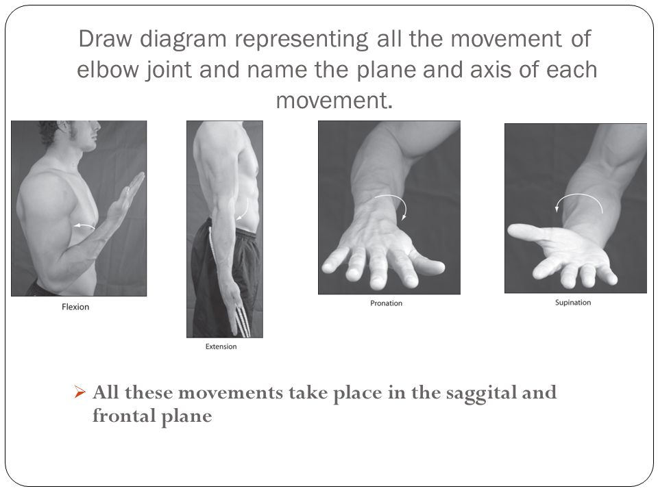 Draw diagram representing all the movement of elbow joint and name the plane and axis of each movement.
