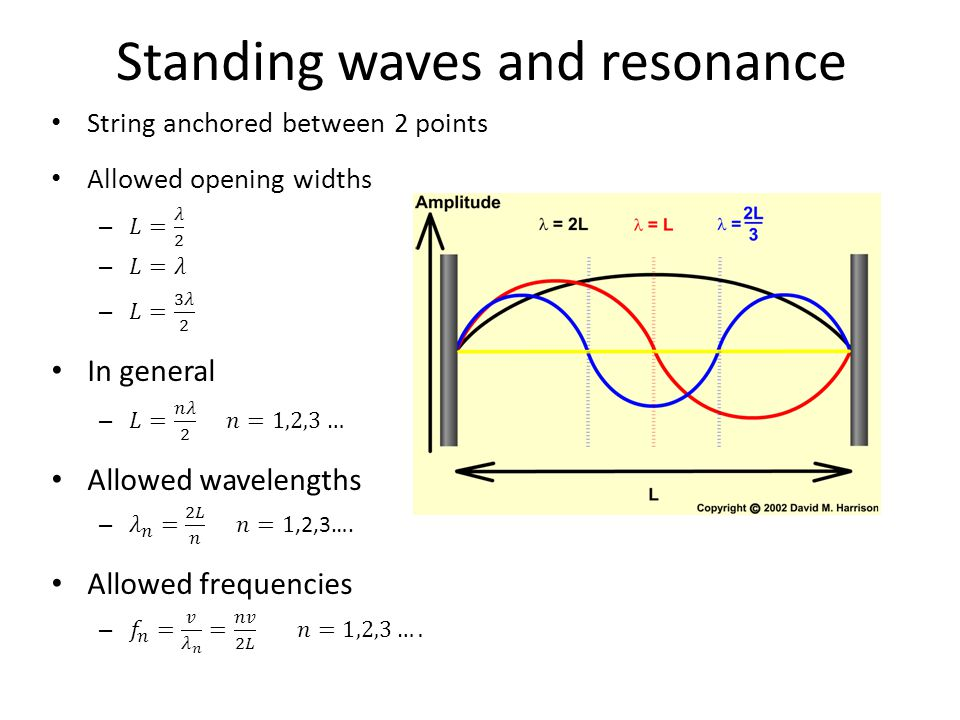 Standing Waves Review Harmonic Oscillator Review Traveling ...