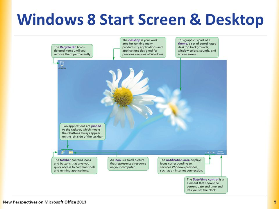 Windows 8 Start Screen & Desktop