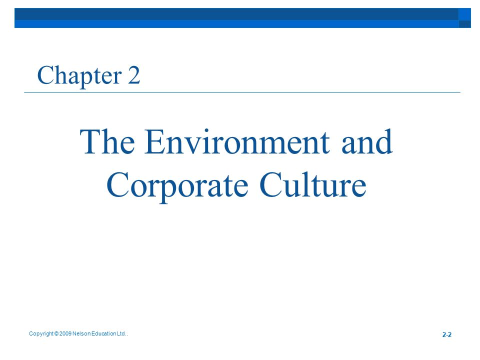 The Environment and Corporate Culture Chapter 2