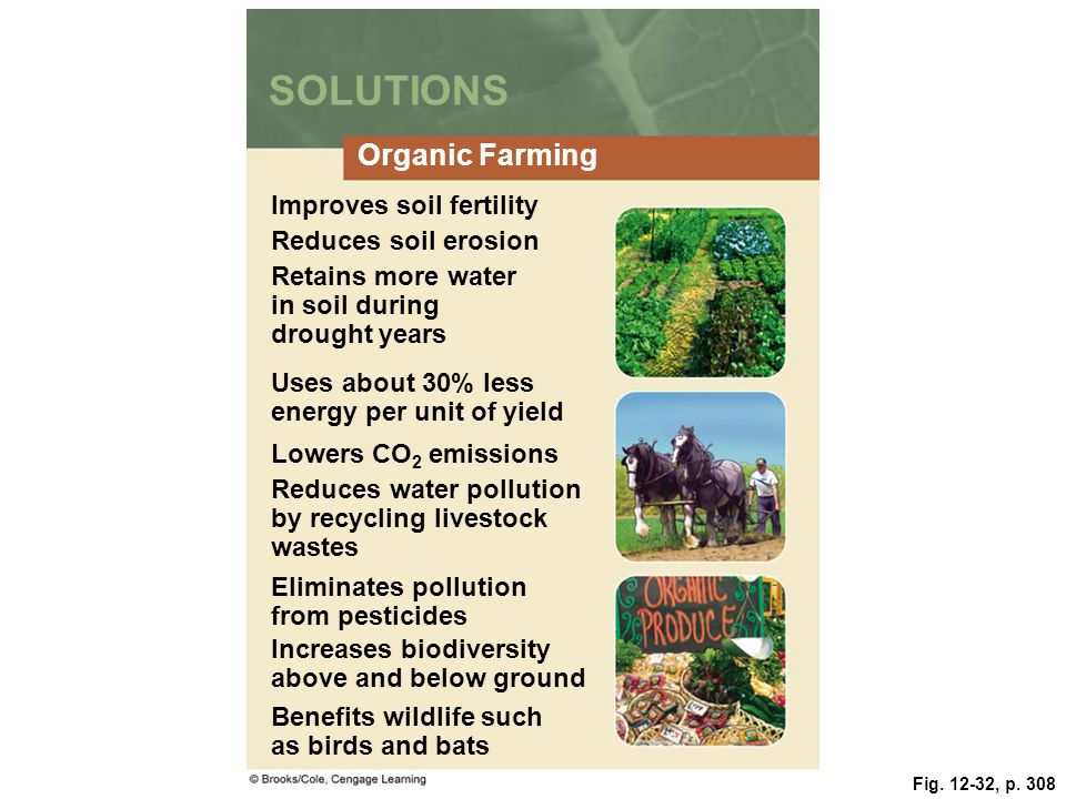Food soil and pest management ppt video online download for Organic soil solutions