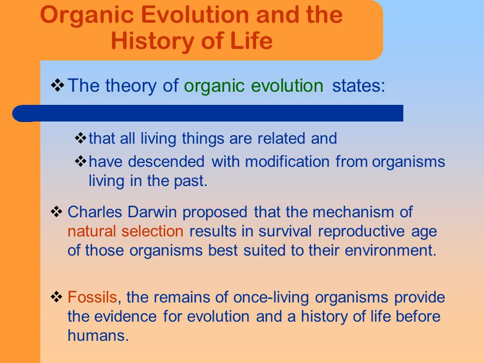 Theory Of Organic Evolution By Natural Selection