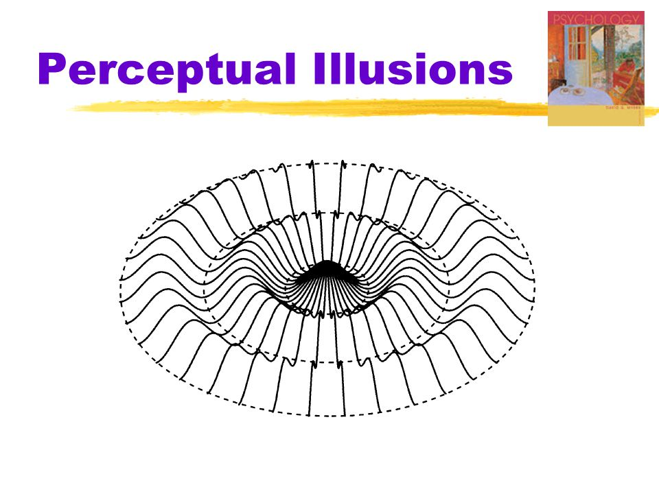an analysis of perceptual illusions Descartes and the method of doubt doubt and certainty  generally, we might say that perceptual illusions are special cases (and ones we can frequently explain.
