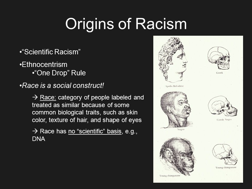 the evolution of racism and discrimination in america Evolution myths: evolutionary theory leads to racism and genocide by michael le page darwin's ideas have been invoked as justification for all sorts of policies.