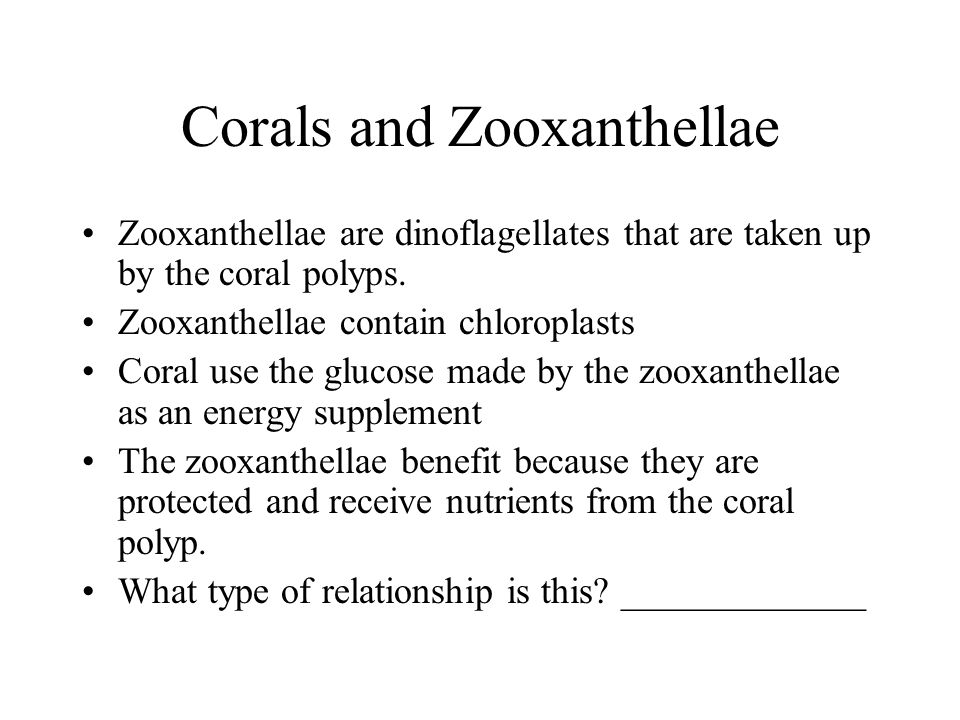 Corals and Zooxanthellae