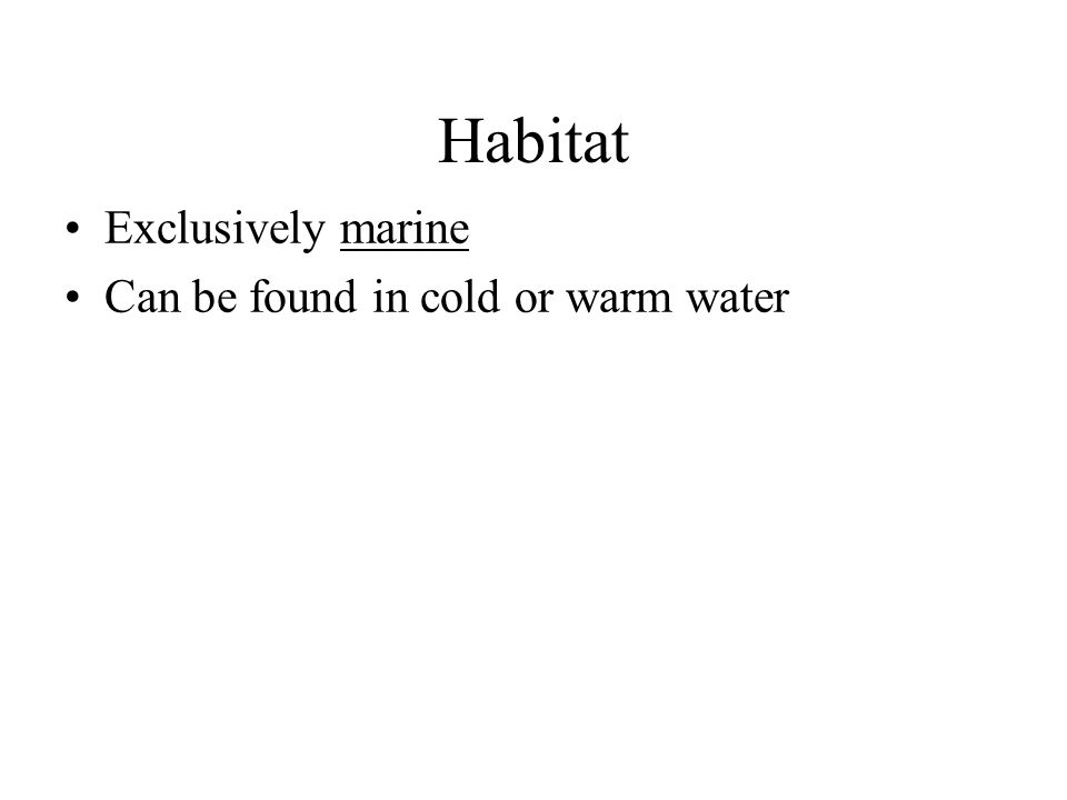 Habitat Exclusively marine Can be found in cold or warm water