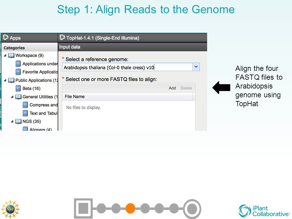 Step 1: Align Reads to the Genome