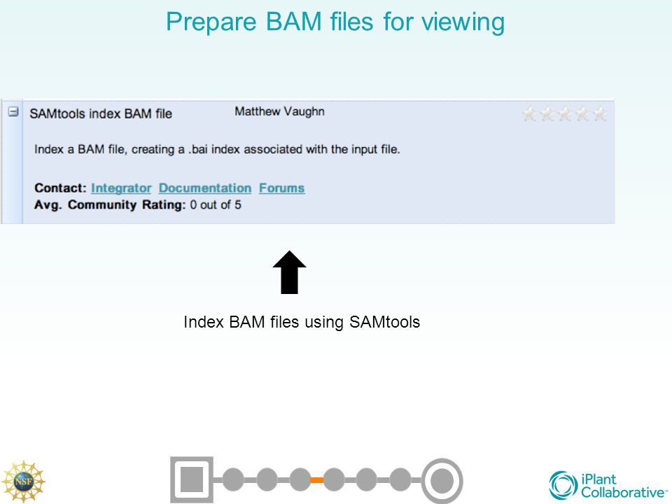 Prepare BAM files for viewing