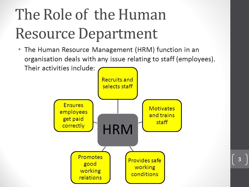 the role of human resource department 107 articles miroslava peicheva summary: the objective of this article is to provide arguments in support of the thesis that the human resource department plays a key.