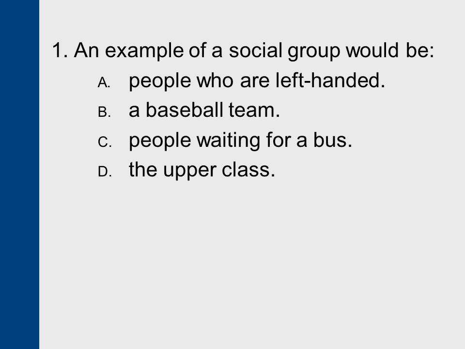 1. An example of a social group would be:
