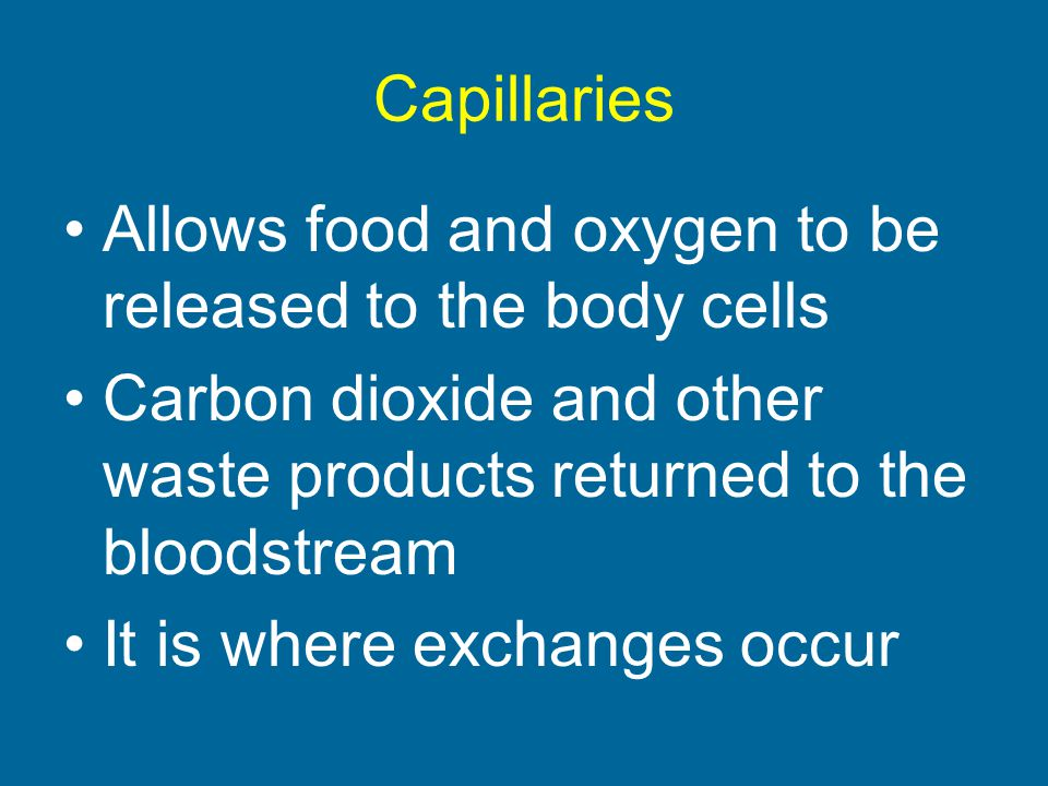 Capillaries Allows food and oxygen to be released to the body cells. Carbon dioxide and other waste products returned to the bloodstream.
