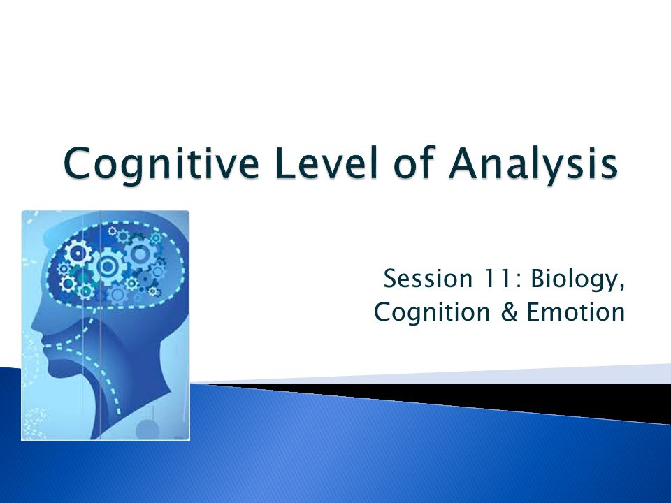 bio cognitive cycle emotion Cycle and emotion: how and why do emotions vary during the menstrual cycle   431 social learning theory (slt) 432 cognitive theory 5 interpreting  3  women are born with all the ova that they will ever have.