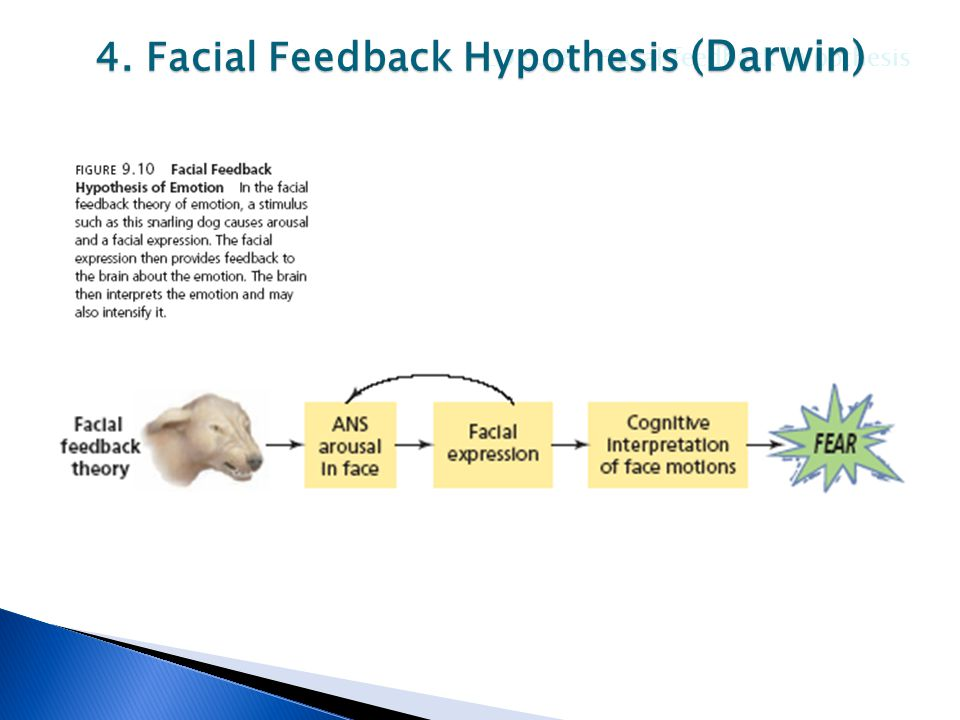 Facial feedback hypothesis theory