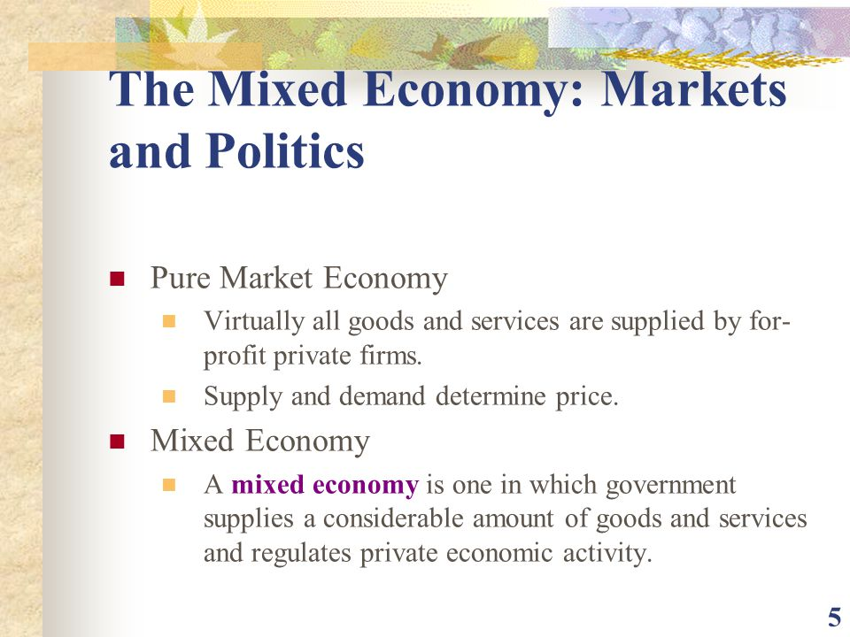 The Mixed Economy: Markets and Politics